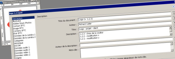 gestion-semantique-de-version